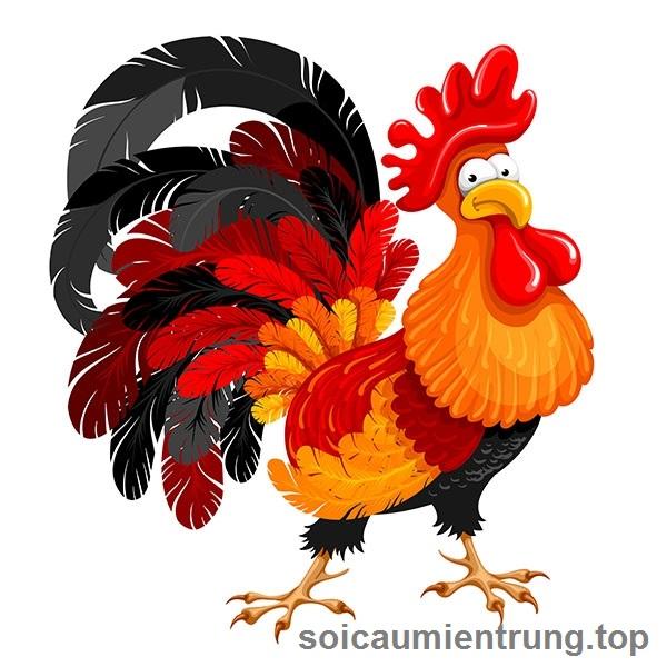 Giải mã giấc mơ thấy các loại gà