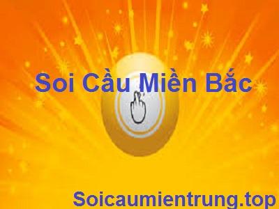 soi-cau-366